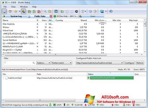 Screenshot DC++ Windows 10