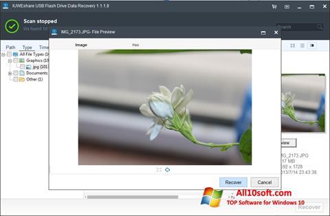 Screenshot USB Flash Drive Recovery Windows 10