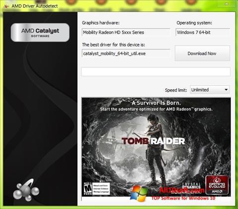 Screenshot AMD Driver Autodetect Windows 10